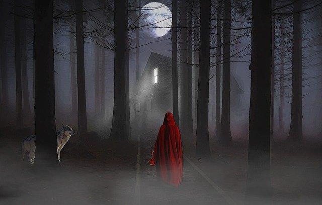C'è una casa in un bosco, è buio. una ragazza con un mantello rosso sta amminando verso la casa e un lupo la osserva