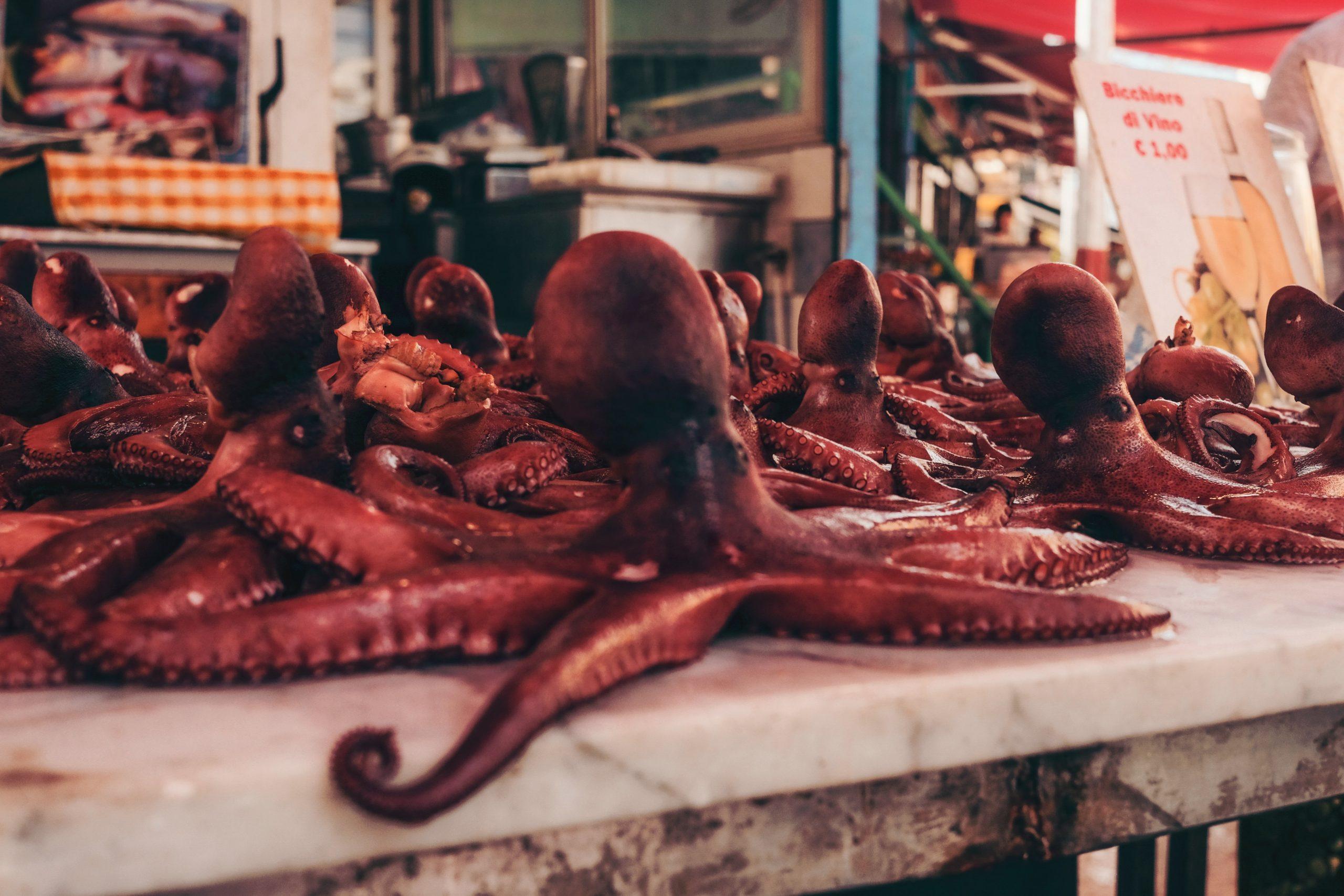 Polpi in mostra su un banco del mercato di Ballarò a Palermo. L'ho scelta per introdurre un mio vecchio articolo sulla città siciliana
